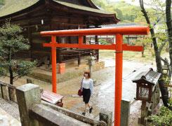 「いじめ除け」の神様「八尾羅宮」。江戸時代には、お陰が強過ぎて場所を移されたことも…。