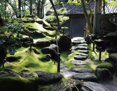 旧野﨑家住宅(国指定重要文化財)