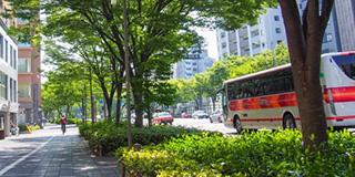 児島の交通・駐車場について