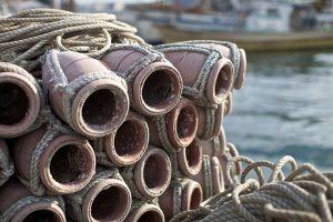 タコ、めばるいかなごままかり貝柱穴子舌平目河豚太刀魚鯛海苔
